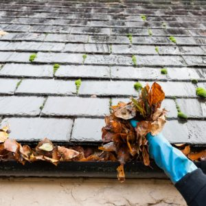 Gutter cleaning South West London services